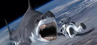 Monstros , carros, tubarões, zumbis, Star Wars… E Wolverine?